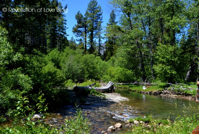 © Revolution of Love Blog - Taylor Creek (tahoe_creek)