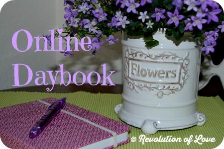 Revolution of Love Blog - logo_daybookW