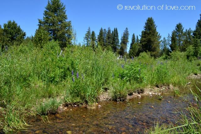 revolution of love - tahoe_lake_4