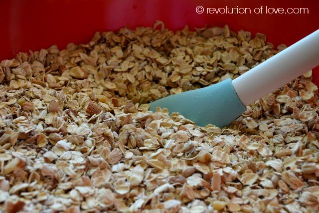 Revolution of Love - pp_granola_2