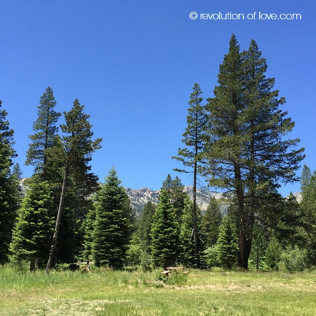 tahoe_park_1W