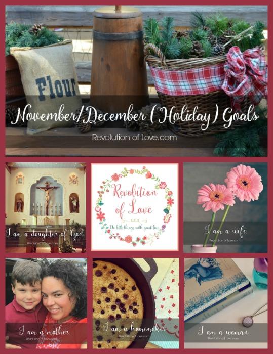 RevolutionofLove.com - Nov/Dec Goals 2015 (goals_nov_dec_collage2)