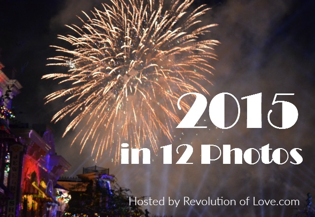 RevolutionofLove.com - 2015 in 12 Photos // logo_end_year_2015A