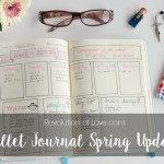 How I Use My Bullet Journal - Spring 2016 Update