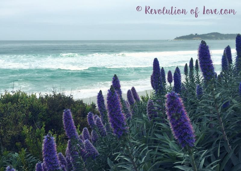 © Revolution of Love.com - cwa_3_2016_ocean_2