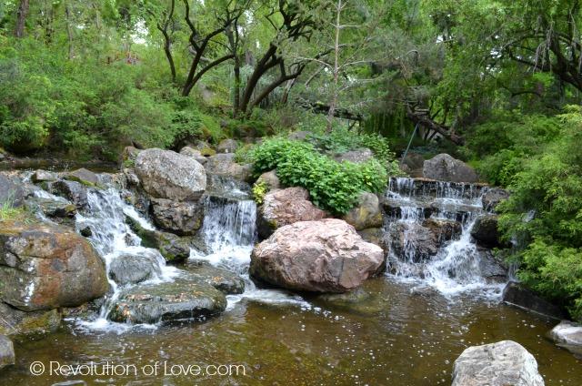 RevolutionofLove.com - Gilroy Gardens (cwa_5_16__16_f)