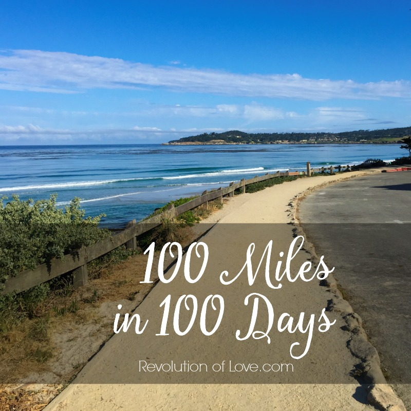 RevolutionofLove.com - 100 Miles in 100 Days(logo_100_miles)