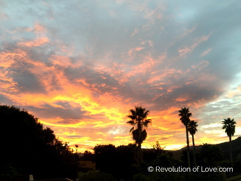 RevolutionofLove.com - 31_days_2016_sunrise
