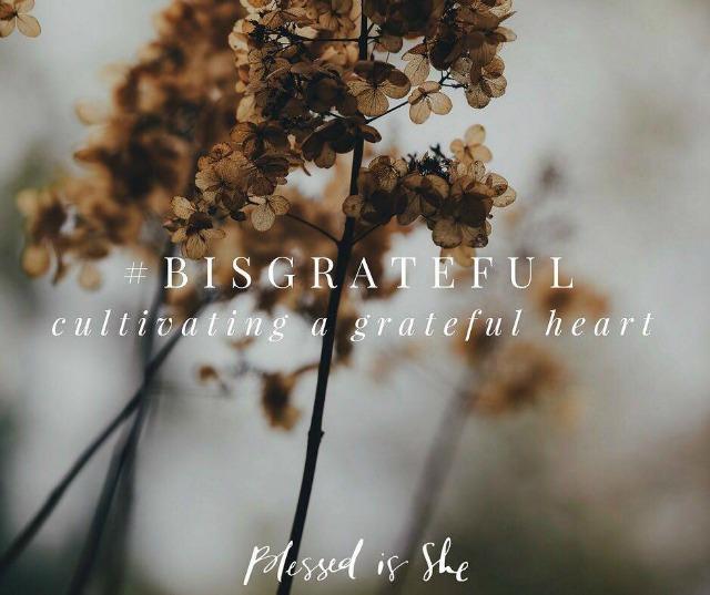 bis_grateful_2016_a