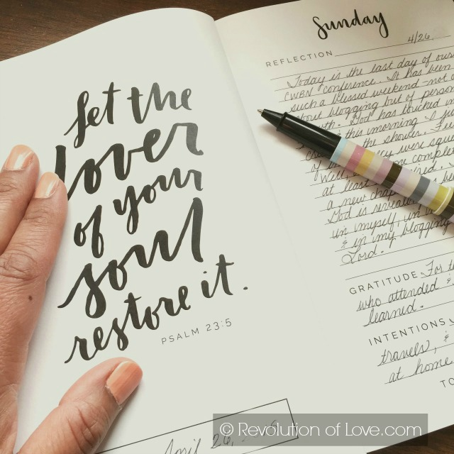 RevolutionofLove.com - goal_summer_15_a